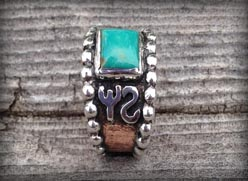 Turquoise brand ring