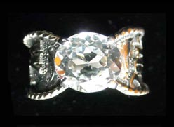 Western Bonanza Livestock show manager ring