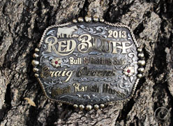 Red Bluff Bull Sale